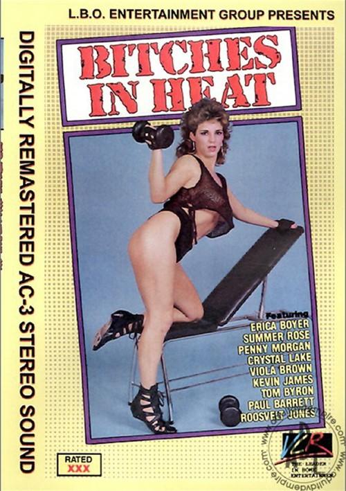 Bitches In Heat Vol. 7